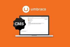 integracion de aplicaciones web en guatemala - cms umbraco